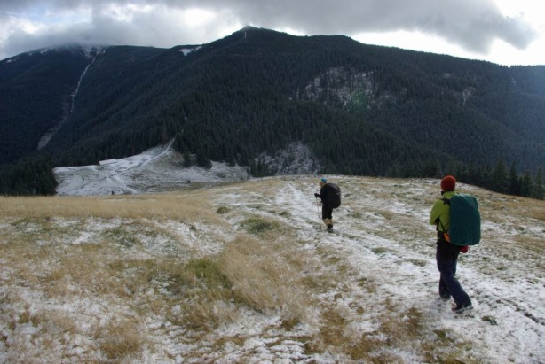 Saua Terha - vedere spre Mt. Viisoara